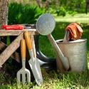 Bild för kategori Odling och trädgård