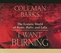 Bild på I Want Burning