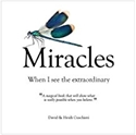 Bild på Miracles : When I See The Extraordinary
