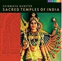 Bild på Sacred Temples Of India