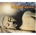 Bild på Falling Awake [CD]