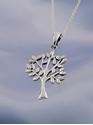 Bild på Livets träd i silver på en silverkedja