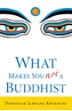 Bild på What Makes You Not a Buddhist