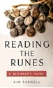 Bild på Reading The Runes : A Beginner's Guide