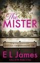 Bild på The Mister