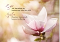 Bild på Egot och själen (70x50 cm): magnolia (liggande)
