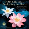 Bild på Pema Chodron Calendar 2020 : Awakening the Heart