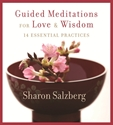 Bild på Guided meditations for love and wisdom - 14 essential practices