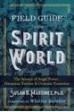 Bild på Field Guide To The Spirit World