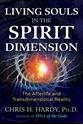Bild på Living Souls In The Spirit Dimension