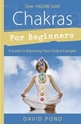 Bild på Chakras for beginners - a guide to balancing your chakra energies