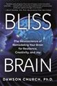 Bild på Bliss Brain